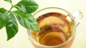 Cup of tea. Top view glass cup of tea with herbal on wooden table stock video