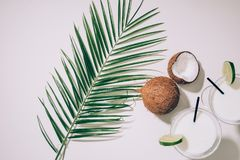 Top view of glasses with coconut cocktails, lime and drinking straws, green palm leaves and exotic coconuts. On white royalty free stock photography