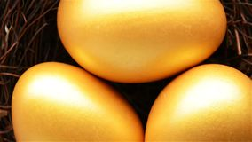 Top view gold eggs. Rotating stock footage