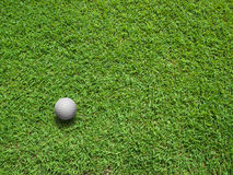 Top View of Golf ball. Top View of white Golf ball on Green Grass Royalty Free Stock Photography