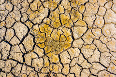 Top view of grass in drought cracked soil texture.Dry mud background texture. Global Warming Stock Images