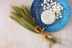 Top view of greek cheese and bulgarian cheese on wooden table over wooden textured background. Symbols of jewish holiday - Shavuot Royalty Free Stock Images