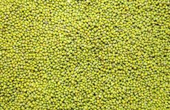 The top view Green bean or Mung bean Royalty Free Stock Image