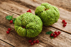 Top view on green exotic fruits with red berries Stock Photography