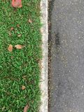 Top view green grass and Asphalt road separated by white concrete lines stock photos