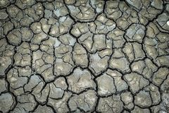 Top view of ground mud crack Stock Photography