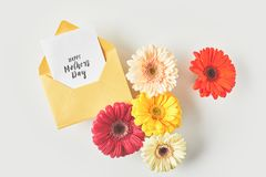 Top view of happy mothers day greeting card and beautiful gerbera flowers. On grey royalty free stock images
