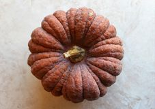 Top view of an heirloom winter squash. Top view of a healthy harvest of an heirloom winter squash stock photos