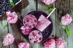 Top view Healthy summer desserts. Ice cream popsicles with black currant, fresh mint and berries, pink wisteria flowers on black p. Late over dark rustic wooden royalty free stock image