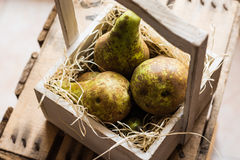 Top view of heap of ripe organic conference pears on straw in aged wood box, local produce, authentic style Royalty Free Stock Image