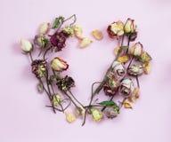 Dried Petal Rose Royalty Free Stock Photo