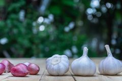 Top view of herbal vegetable ingredients, fresh garlic and red onion, on old wooden table, cooking preparation concept. Copy space kitchen spice chopping board stock images