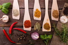 Top view of herbs and spices on wooden board royalty free stock photography