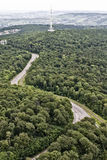 Top view of a highway in the woods Royalty Free Stock Images