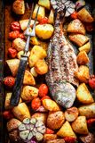 Homemade seabream with tomatoes and potatoes. Top view of homemade seabream with tomatoes and potatoes stock photography