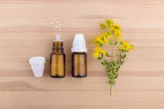 Homeopathic remedy with St. John`s wort. Top view of a homeopathic medicine with blooming St. John`s wort on a wooden background Royalty Free Stock Image