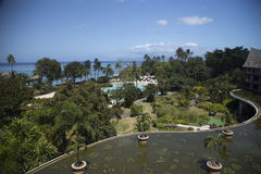 Top view of the hotel on a tropical island. Seashore, pool area with plants royalty free stock photography