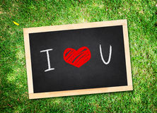 Top view of I love you word on chalkboard lay on green grass,Love concept. royalty free stock images
