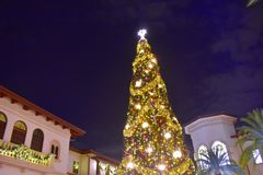 Top view of illuminated and decorated Christmas Tree at night on open mall background in Lake Buena Vista area. Orlando, Florida. November 16, 2018 Top view of royalty free stock images