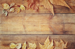 Top view image of autumn leaves over wooden textured background Stock Photos