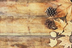Top view image of autumn leaves and pine cones over wooden textured background royalty free stock images