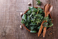 Top view image of leafy green mix of kale, spinach, baby beetroo. T leaves and garlic over rustic wooden background with copyspace royalty free stock image