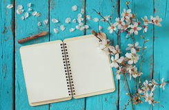 Top view image of spring white cherry blossoms tree, open blank notebook next to wooden colorful pencils on wooden table Royalty Free Stock Image