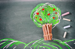Top view image of wooden pencils and tree drawing Royalty Free Stock Image