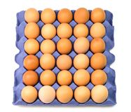 Raw brown chicken eggs in container. Top view isolated raw brown chicken eggs in purple container Stock Photography
