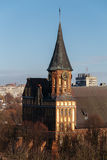 Top view of the Konigsberg Cathedral in Kaliningrad. Central clock tower rises on the trees. Stock Images