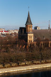 Top view of the Konigsberg Cathedral in Kaliningrad. Central clock tower rises on the trees Royalty Free Stock Image