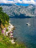 Top view on Kotor bay Royalty Free Stock Photos