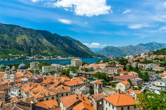 Top view on Kotor city and bay Royalty Free Stock Photos
