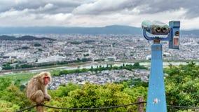Kyoto from Arashiyama mountain with monkey and binoculars. Top view of Kyoto from Arashiyama mountain with monkeys and binocular, cloudy day, focus on foreground Stock Images