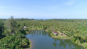 Top view of the lake and the countryside. Aerial. Thailand stock footage