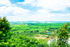 Top view Landscape of green meadow with blue sky and mountain at Stock Images