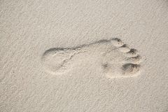 Top view from a left footprint in a sand ground Royalty Free Stock Photo