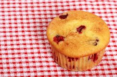 Top View Lemon Cranberry Muffin Stock Images