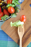 Top View of Lettuce on Fork Royalty Free Stock Photos