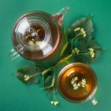 Linden tea and linden branches. Square photo. Top view. Top view of linden tea and linden branches with flowers on green background. Square photo royalty free stock photo