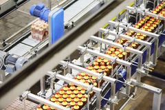 Top view of line with bottles of beer with red caps. Top view of line with bottles of fresh light beer with red caps in modern beer factory stock images