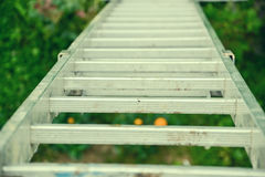 Top view of a long silver aluminum ladder leaning against the wall of the house. Close up view from top of tall step ladder Royalty Free Stock Photography