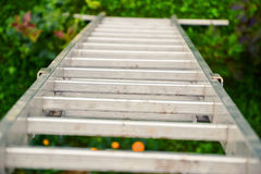 Top view of a long silver aluminum ladder leaning against the wall of the house. Close up view from top of tall step ladder Stock Photos