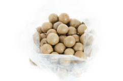 Top view  macadamia Stock Photography