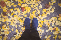 Top View of Man entering the fall season,  standing in dry autum. N leaves Royalty Free Stock Photo