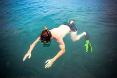 Top view of a Man snorkeling in the sea Royalty Free Stock Photo
