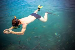Top view of a Man snorkeling in the sea Royalty Free Stock Photography