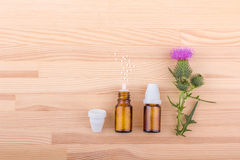 Homeopathic medicine with  Mary thistle Royalty Free Stock Photography