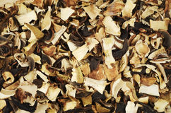 Top view of mixed dried mushrooms Stock Photo