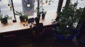 Top view of mixed race man working with laptop and smart phone at cafe. Plants at background stock video